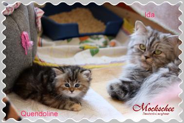 Ida und Quendoline
