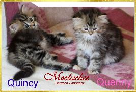 Quincy und Quenny