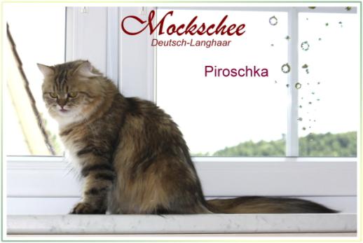 Piroschka 15 Monate