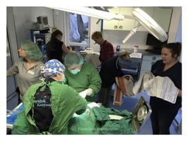 Kaiserschnitt-OP-Klinik-Kaufungen