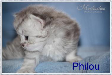Philou